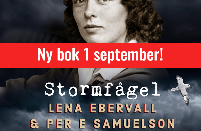 stormfågel-boksida-1september